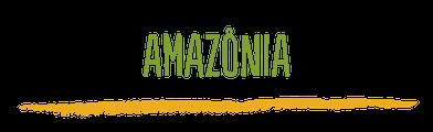 Programa Maranhão