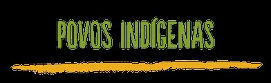 Programa Povos Indígenas